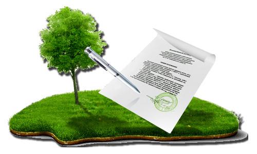 Договор и земельный участок