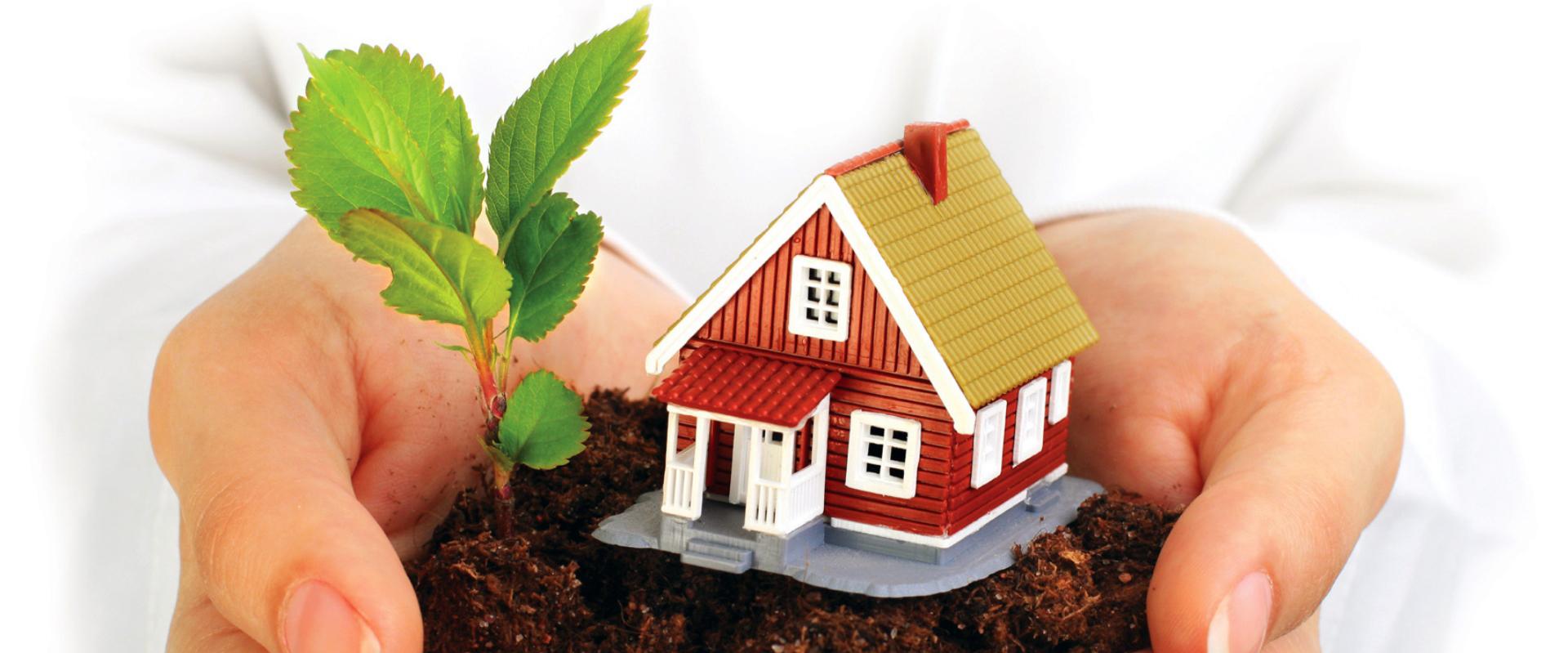 Земля и дом в руках