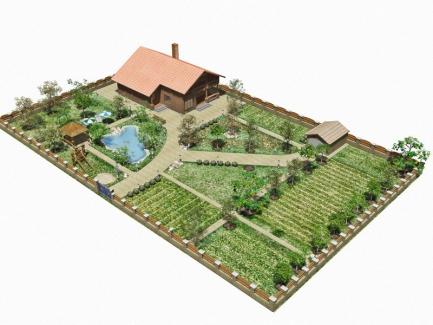 План расположения земельного участка