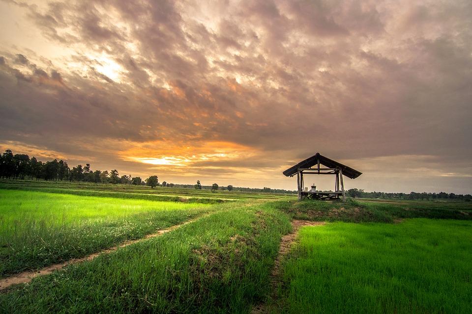 Строительство на землях сельскохозяйственного назначения