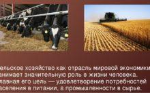 Формы собственности (земельный режим) и их роль в социально-экономической организации сельского хозяйства