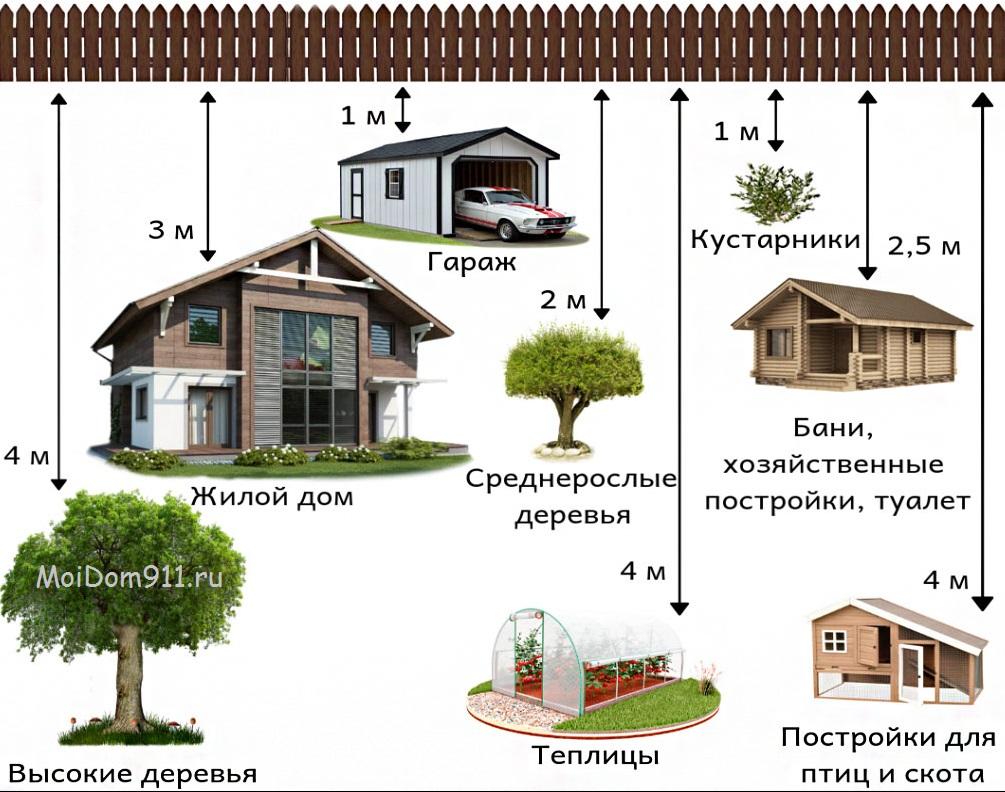 расстояние построек и деревьев на земельном участке от соседей